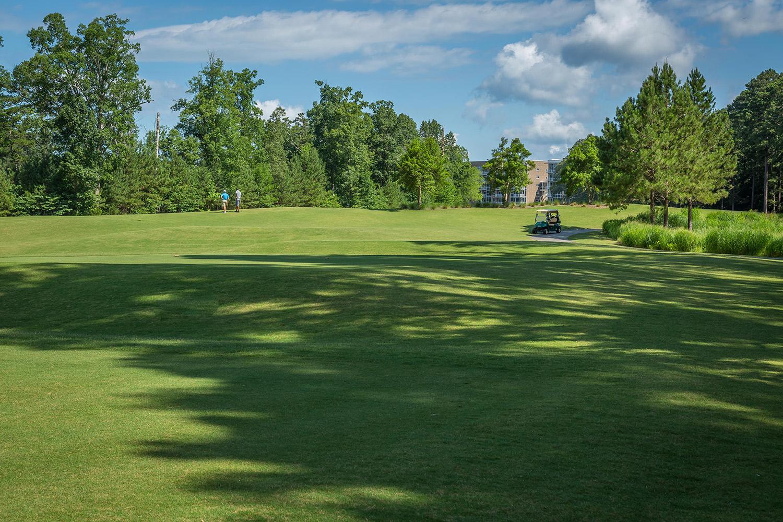 Triangle-Golf-Chalange-2016-115