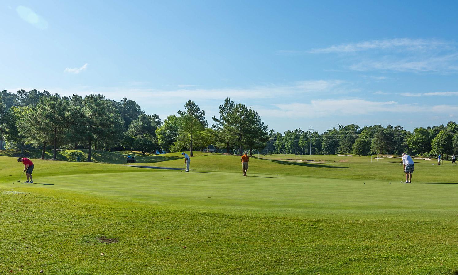 Triangle-Golf-Chalange-2016-16